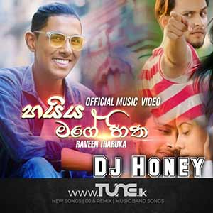 Haiya Mage Hitha - (Remix) Sinhala Song Mp3