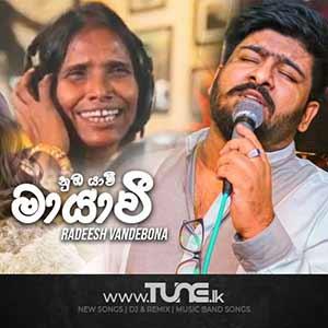 Mayawee Sinhala Songs MP3