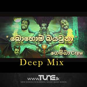 Mama Bohoma Baya Una - Deep House Mix Sinhala Song MP3