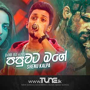 Papuwata Mage (Wedi Pita Wedi) Sinhala Songs MP3