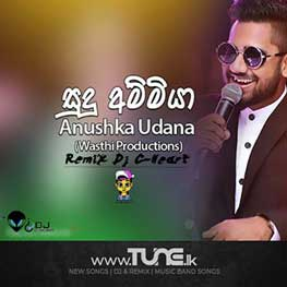 Sudu Ammiya Remix Sinhala Song MP3