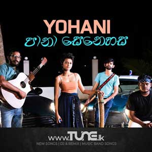 Pana Senehasa (Cover) Yohani ft. Fifteenth March Sinhala Songs MP3