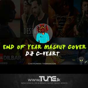 Good Bye 2019 End Of Year Mashup Cover Sinhala Songs MP3