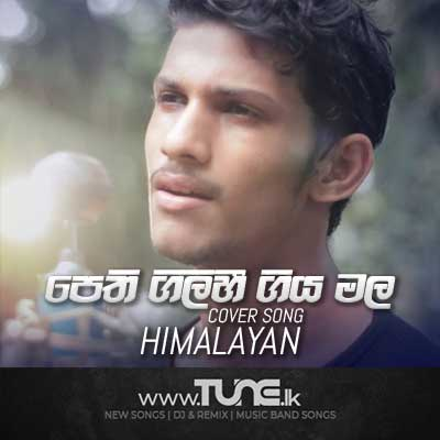 Pethi Gilihi Giya Mala Numbado Cover Song Sinhala Songs MP3