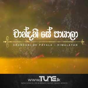 Chandani Se Payala Sinhala Song MP3